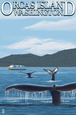 Orcas Island, WA - Whales and Ferry by Lantern Press