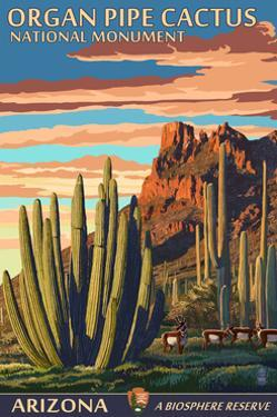 Organ Pipe Cactus National Monument, Arizona by Lantern Press