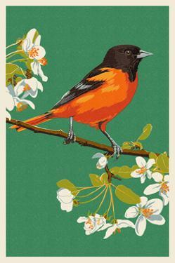 Oriole and Blossoms by Lantern Press