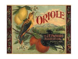 Oriole Brand - Pomona, California - Citrus Crate Label by Lantern Press
