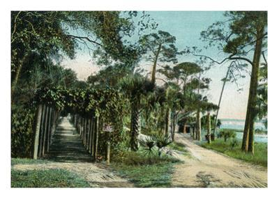 Ormond, Florida - Arbor View from Road