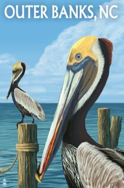 Outer Banks, North Carolina - Pelicans by Lantern Press