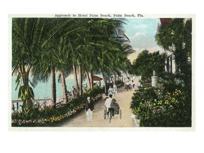 Palm Beach, Florida - Approach to Hotel Palm Beach Scene