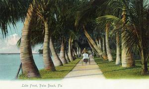 Palm Beach, Florida - Lake Front Scene by Lantern Press