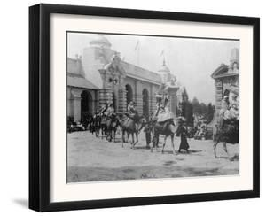 Pan-American Exposition Camel Parade Photograph - Buffalo, NY by Lantern Press