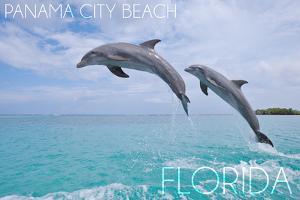 Panama City Beach, Florida - Jumping Dolphins by Lantern Press
