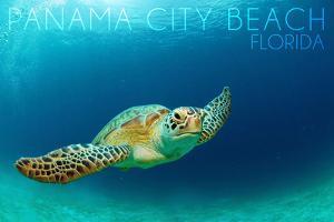 Panama City Beach, Florida - Sea Turtle by Lantern Press