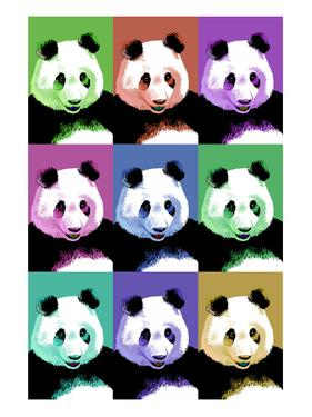 Panda Pop Art - Visit the Zoo by Lantern Press