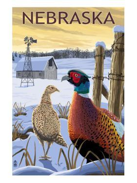 Pheasants - Nebraska by Lantern Press