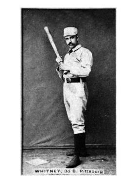 Pittsburgh, PA, Pittsburgh Alleghenys, Art Whitney, Baseball Card by Lantern Press