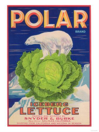 Polar Lettuce Label - Salinas, CA by Lantern Press