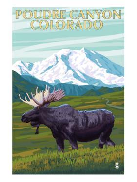 Poudre Canyon, Colorado - Moose by Lantern Press