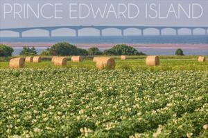 Prince Edward Island - Confederation Bridge and Hay Bales by Lantern Press