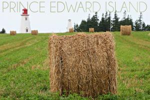 Prince Edward Island - Lighthouse and Farm by Lantern Press