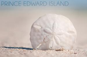 Prince Edward Island - Sand Dollar by Lantern Press