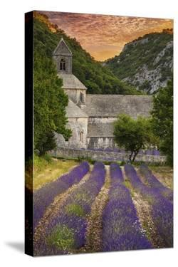 Provence, France - Lavender Fields by Lantern Press