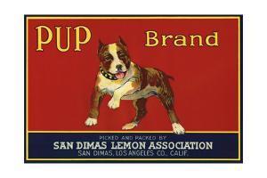 Pup Brand - San Dimas, California - Citrus Crate Label by Lantern Press