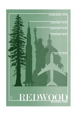 Redwood National Park - Redwood Relative Sizes by Lantern Press