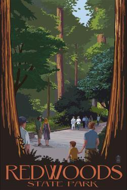Redwoods State Park - Boardwalk by Lantern Press