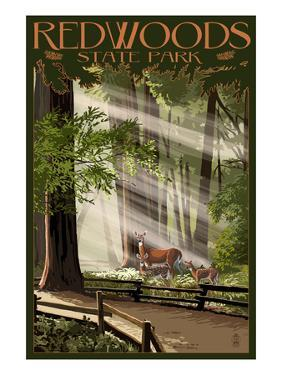 Redwoods State Park - Deer and Fawns by Lantern Press