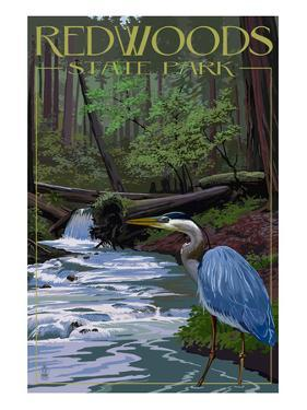 Redwoods State Park - Heron and Waterfall by Lantern Press