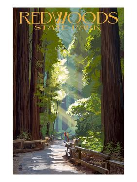 Redwoods State Park - Pathway in Trees by Lantern Press