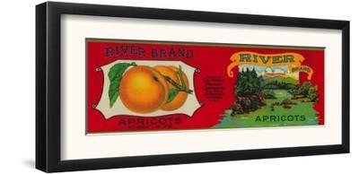 River Apricot Label - San Francisco, CA by Lantern Press
