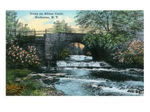 Rochester, New York - Allen's Creek Scene by Lantern Press
