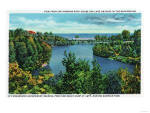 Rochester, NY - Rochester Zoo View of Lake Ontario and Durand Eastman Park by Lantern Press