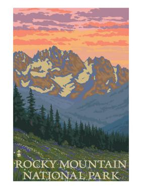 Rocky Mountain National Park, Co - Spring Flowers, c.2009 by Lantern Press