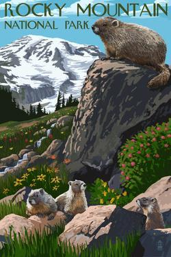 Rocky Mountain National Park - Marmots by Lantern Press