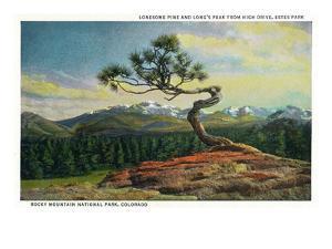 Rocky Mt. Nat'l Park, Colorado - High Drive Lonesome Pine View of Long's Peak by Lantern Press