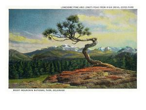 Rocky Mt. Nat'l Park, Colorado - High Drive Lonesome Pine View of Long's Peak by Lantern Press