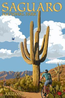 Saguaro National Park, Arizona - Bicycling Scene by Lantern Press