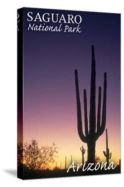 Saguaro National Park, Arizona - Cactus at Dawn by Lantern Press