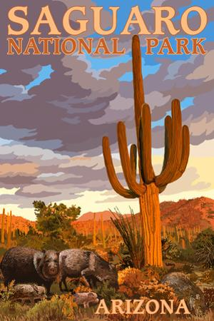 Saguaro National Park - Javelina by Lantern Press
