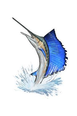 Sailfish - Icon by Lantern Press