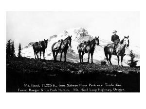 Salmon River Park, Oregon - Man with Horses, Mt Hood in Distance by Lantern Press