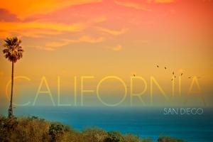 San Diego, California - Sunset and Bird by Lantern Press