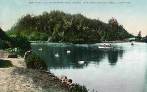 San Francisco, California - Golden Gate Park, Strawberry Hill and Stow Lake by Lantern Press
