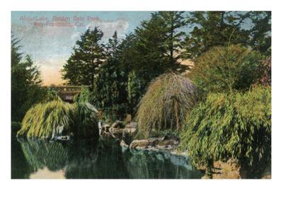 San Francisco, California - Golden Gate Park, View of Alvin Lake