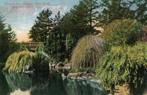 San Francisco, California - Golden Gate Park, View of Alvin Lake by Lantern Press