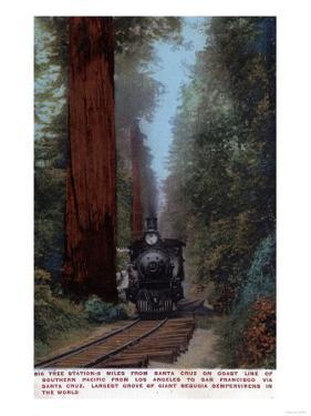 Santa Cruz, California - Big Tree Railroad Station by Lantern Press