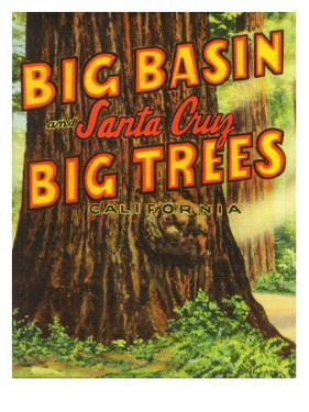 Santa Cruz, California - Big Trees Park, Big Basin Letters by Lantern Press