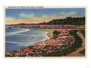 Santa Cruz, California - Cliff Drive View of Ocean, Beach, & Flowers by Lantern Press