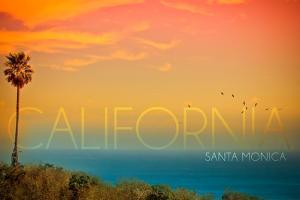 Santa Monica, California - Sunset and Bird by Lantern Press