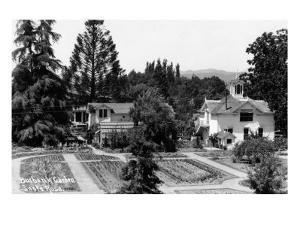 Santa Rosa, California - View of a Burbank Garden by Lantern Press