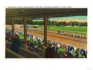 Saratoga Springs, New York - Horses Going to the Post at Race Track by Lantern Press