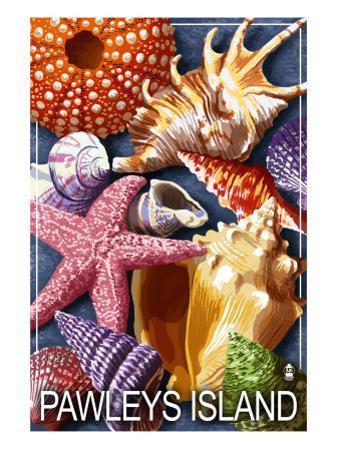 Sea Shells - Pawleys Island, South Carolina by Lantern Press