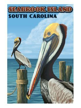 Seabrook Island, South Carolina - Pelicans by Lantern Press